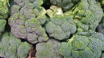broccoli-1429150_960_720