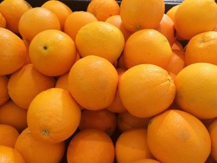 orange-1663180__340