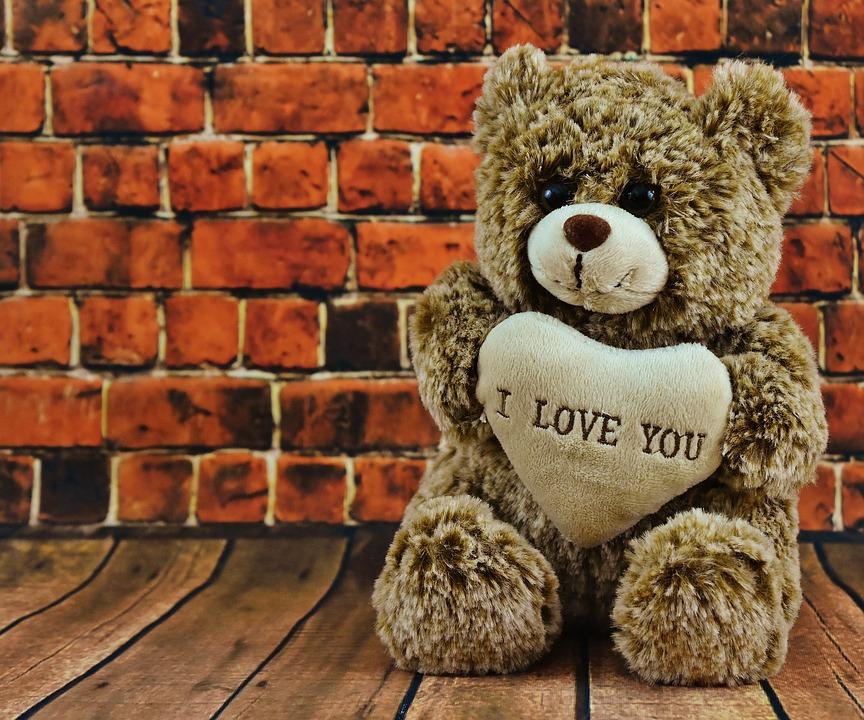 teddy-2061222_960_720
