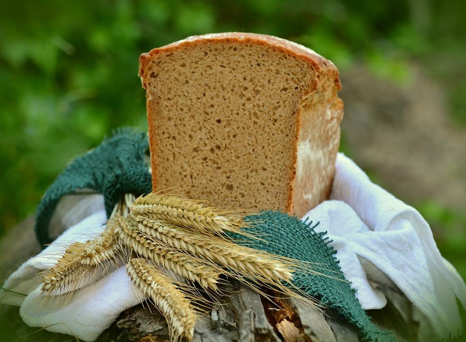 barley-1528172_960_720