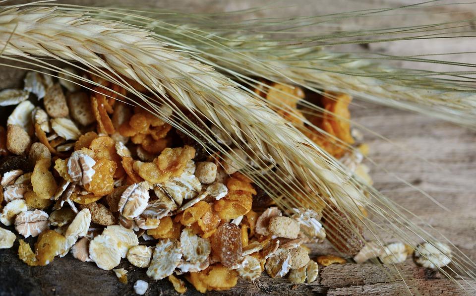 cereals-2437808_960_720
