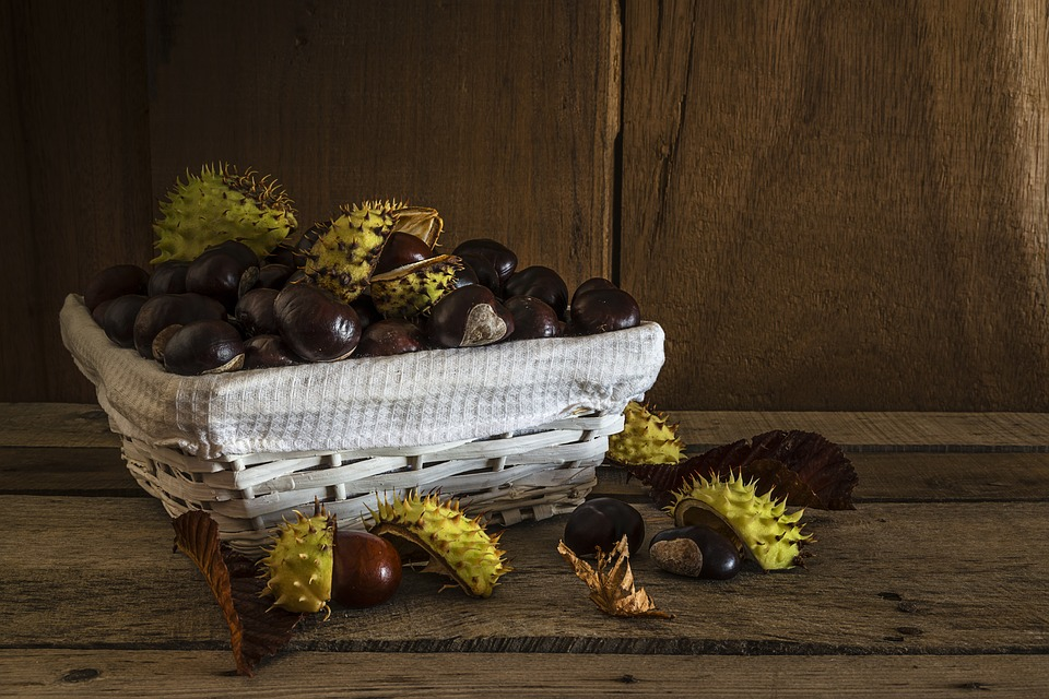 chestnuts-2819416_960_720